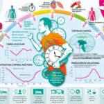 circulos-circadianos-ayuno